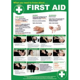 first-aid-poster-3808-p.jpg
