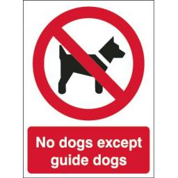 No dogs except guide dogs
