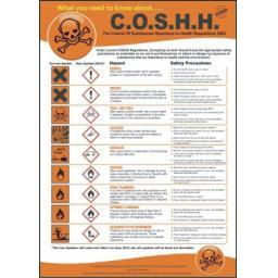 c.o.s.h.h.-poster-3816-1-p.jpg