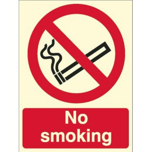No smoking (Photoluminescent)