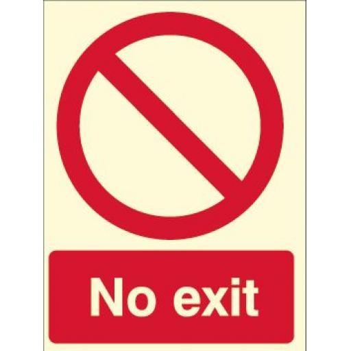 No exit (Photoluminescent)