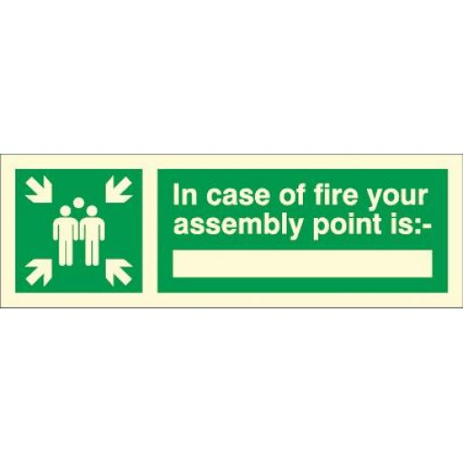 In case of fire your assembly point is: (Photoluminescent)